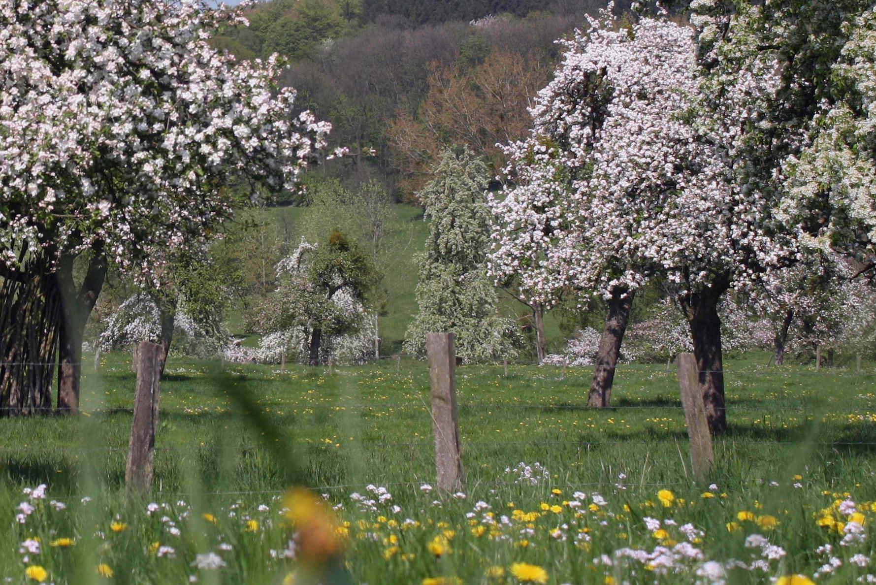bg lente vakantiewoning eijsden